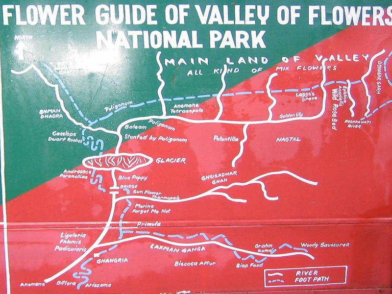 flower map of valley of flowers india travel forum