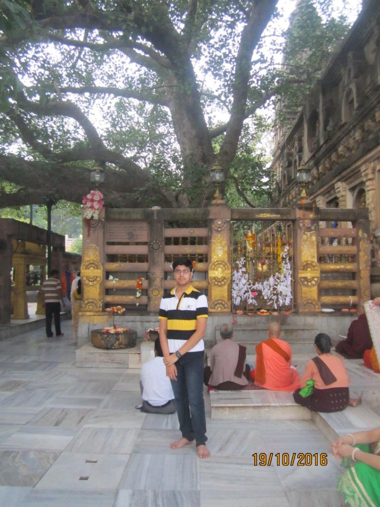 how to travel from bir to bodhgaya