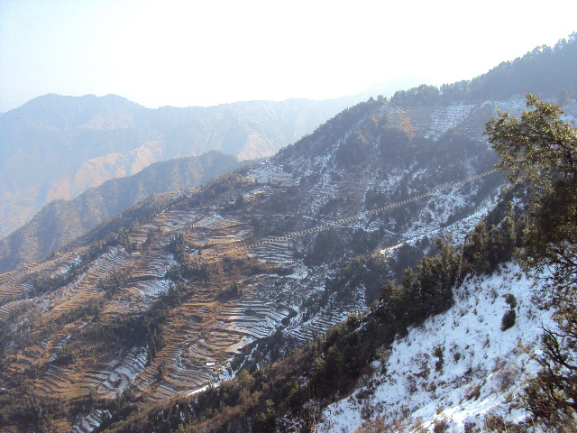 Dhanaulti India  City new picture : snowfall in Dhanaulti on 26'th jan 2011 India Travel Forum ...