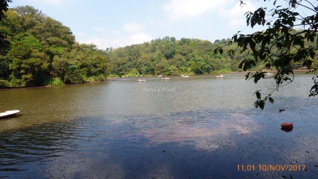Pookode Lake - Serenity!