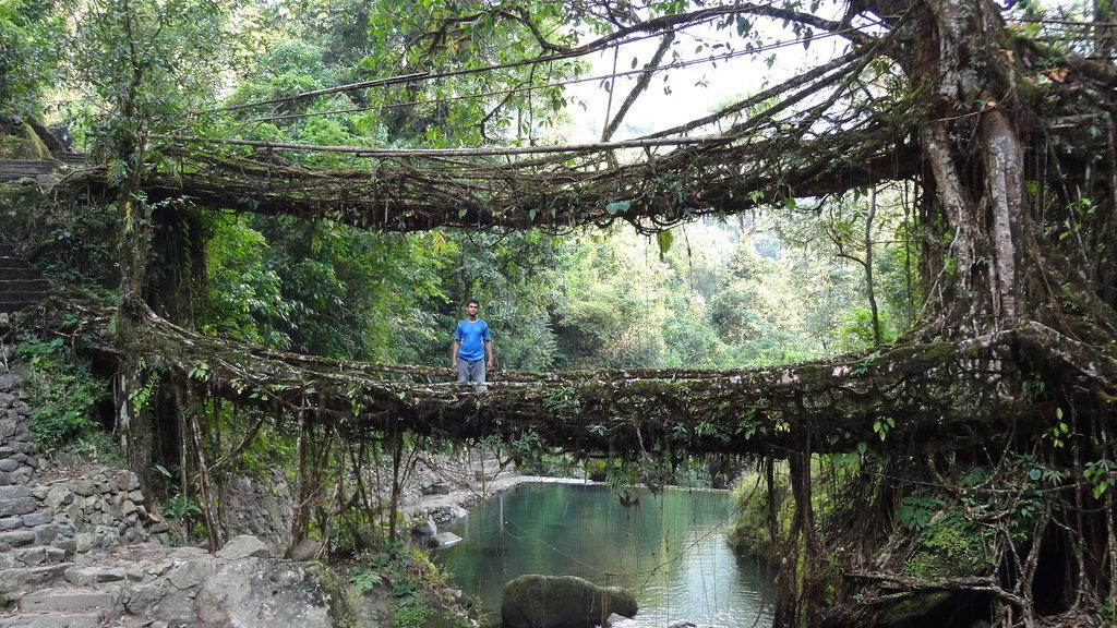 Meghalaya An Unexplored Heavens Of Adventure India