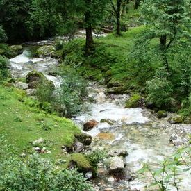 Roopkund Trek - A stream near Wan