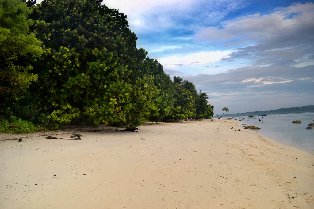Havelock Island: Havelock Island - India Travel Forum