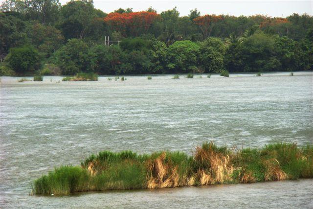 Cauvery River @ Trichy
