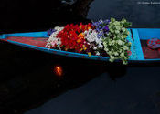 Flowers in the boat by Chetan Kulkarni.  Tags: Jammu and Kashmir, Srinagar, flowers.