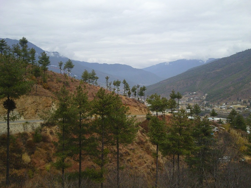how to travel to bhutan from india