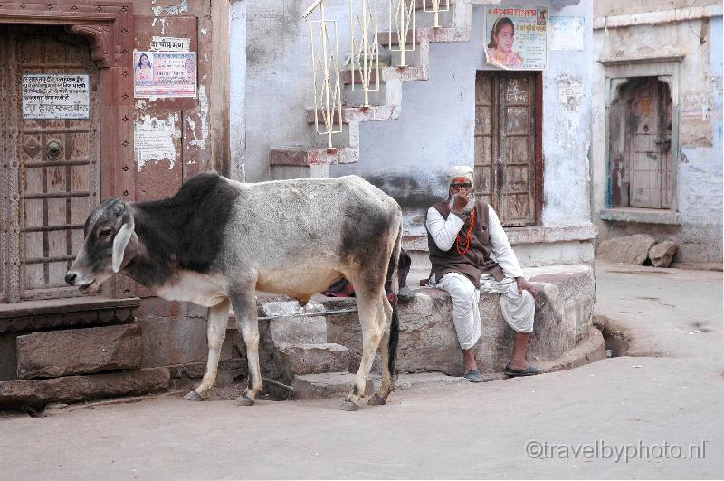 Phalodi India  City pictures : Phalodi: streetscape India Travel Forum | IndiaMike.com