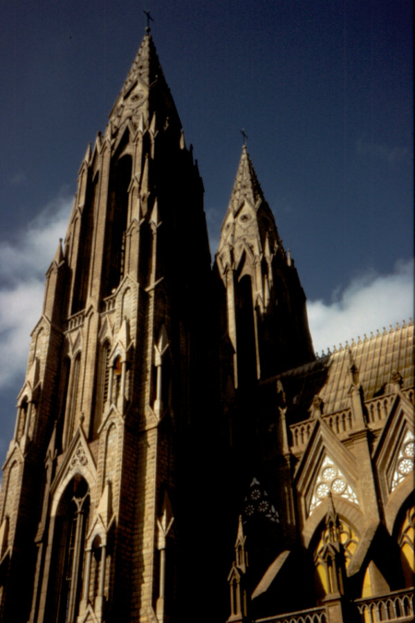 St Philomena's Cathedral