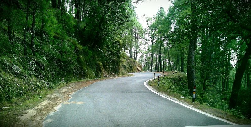On the way to Binsar