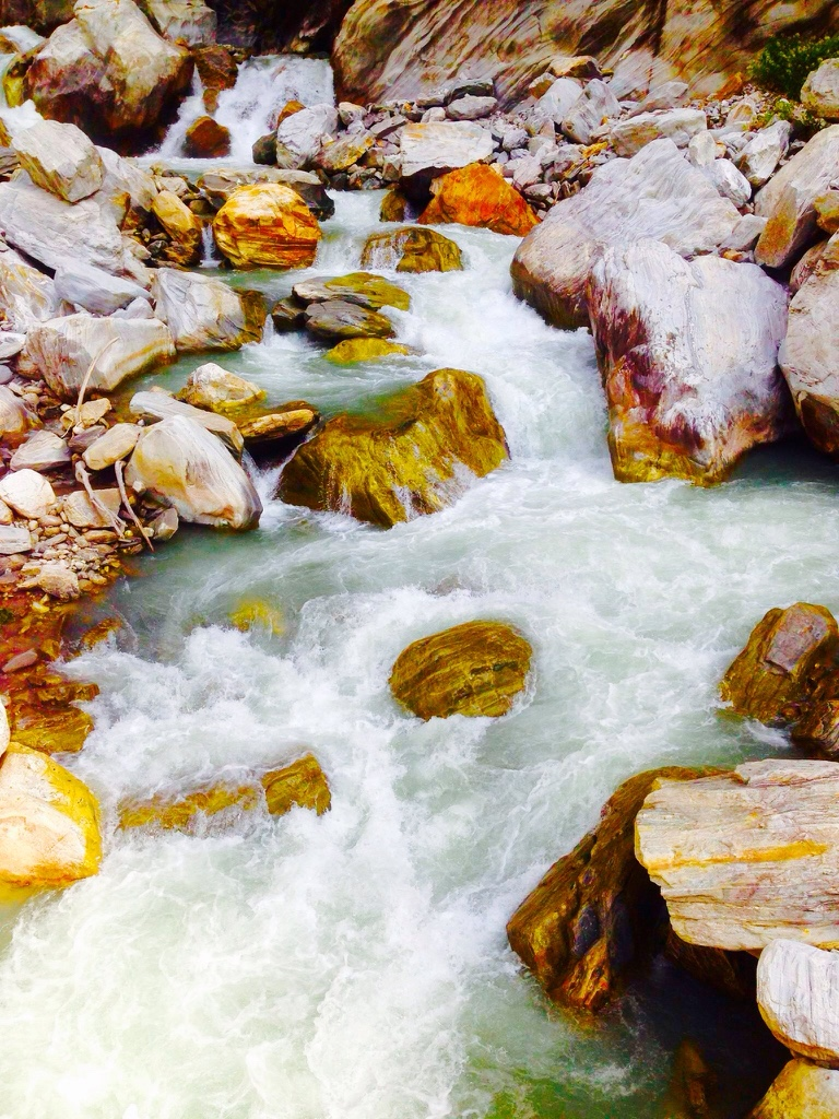 River Pushpawati, Valley of Flowers.(Best River Scenery).