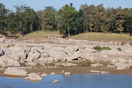 Pench River.JPG