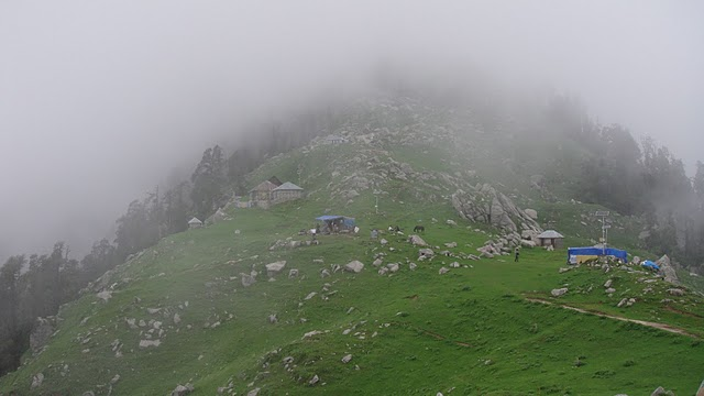 Latest Info On Triund Trek India Travel Forum