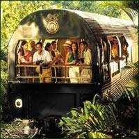 Oriental Express.jpg