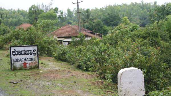 கொல்லூர்  மூகாம்பிகை 23822d1322295353-kodachadri-trekking-in-monsoon-heaven-on-earth-dsc03377