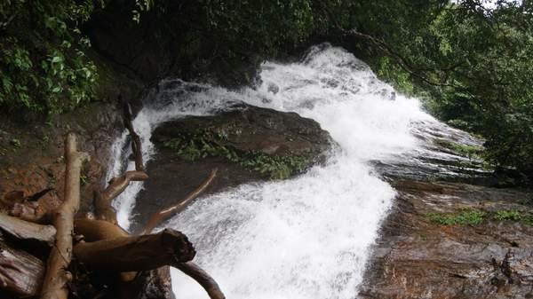 கொல்லூர்  மூகாம்பிகை 23823d1322295353-kodachadri-trekking-in-monsoon-heaven-on-earth-dsc03530