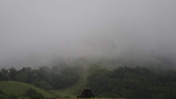 கொல்லூர்  மூகாம்பிகை 23831d1322295417-kodachadri-trekking-in-monsoon-heaven-on-earth-dsc03793
