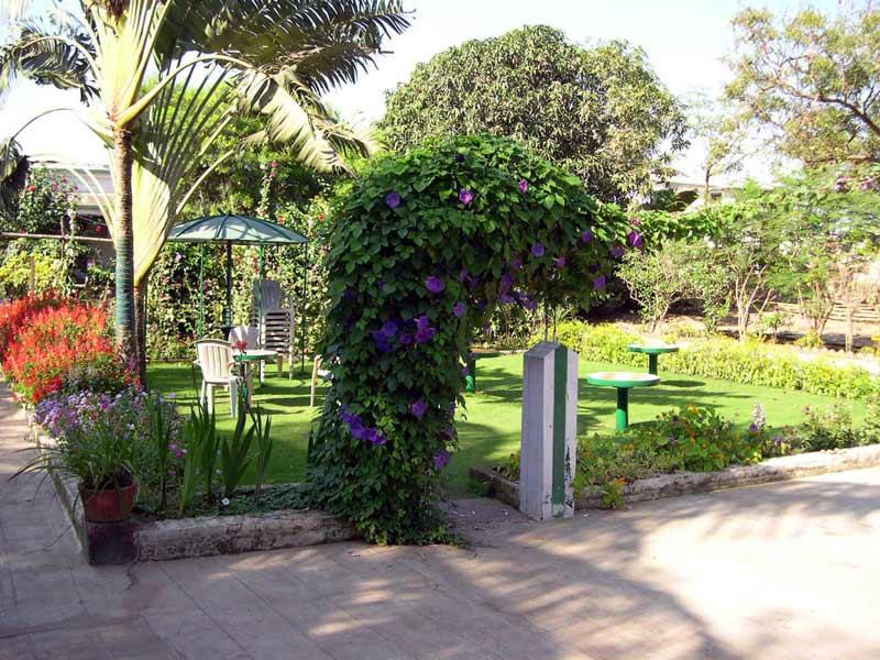 Z-Hotel-garden-w.jpg