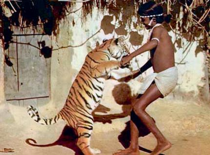chendru the boy and tiger movie meet