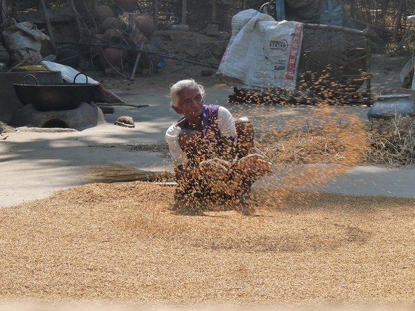 Name:  Shifting grain.jpg Views: 14483 Size:  85.8 KB