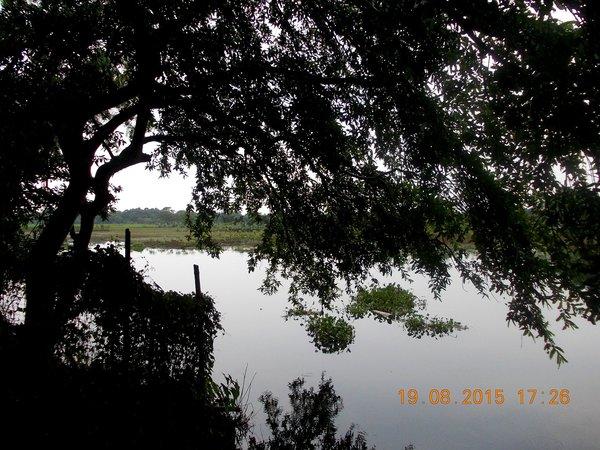 Name:  DSCN3396.jpg Views: 1862 Size:  90.4 KB