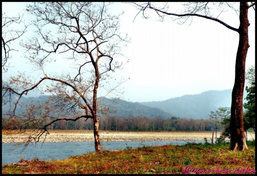 4 Manas River demarcating the International border.JPG