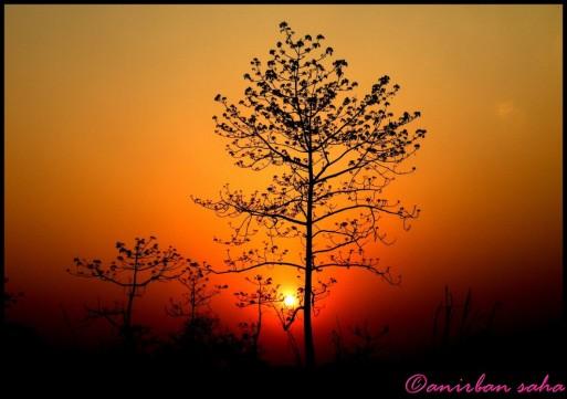5 Sunset-Panbari range.JPG