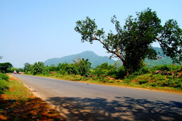 Name:  1 On the Way to Daringbadi from Berhampur.jpg