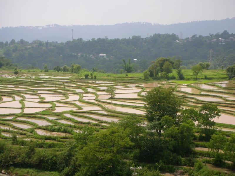 Kangra India  city pictures gallery : Kangra Valley Railway India Travel Forum   IndiaMike.com