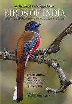 Name:  pictorial-guide-to-the-birds-of-india.jpg