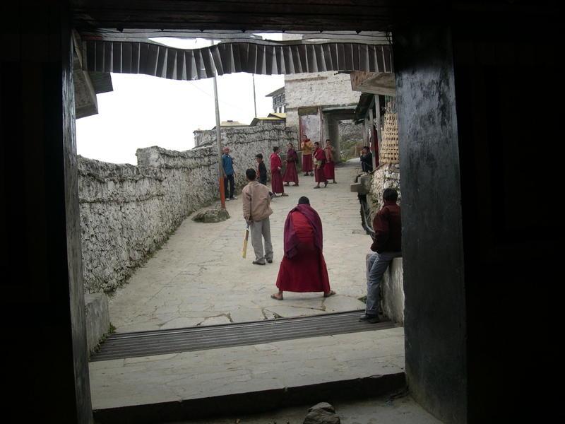 Cricket time at the Tawang Monastery.jpg